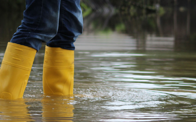 Kingston and Sutton Councils deploy technology to help prevent flooding